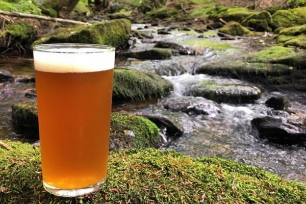Glass of beer by stream.